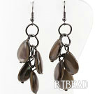 New Design Drop Shape Shell Dangle Earrings