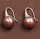 Fashion Simple Style Drop Shape Brown Seashell Beads Horn Charm Earrings With Fish Hook